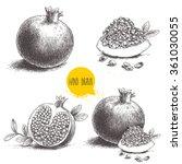 Hand Drawn Pomegranates Set....