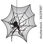 black widow vector | Shutterstock .eps vector #36109387