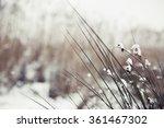 Winter Landscape.winter Scene ...