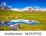 Summer Iceland. Small Lake...