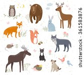 vector set of cute animals  fox ... | Shutterstock .eps vector #361583876