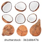 collection of fresh coconuts... | Shutterstock . vector #361686476