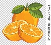 Orange Isolated  Vector Orange...