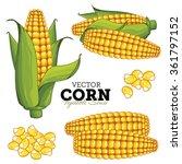 Corn Isolated On White...