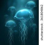 jellyfish | Shutterstock . vector #361804862