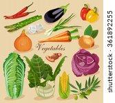 set of fresh vegetables. green... | Shutterstock .eps vector #361892255