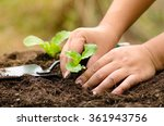 close up farmer hand planting... | Shutterstock . vector #361943756