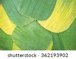 Banana Leaves For Wrapping Foo...
