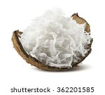 freshly grated coconut in shell ... | Shutterstock . vector #362201585