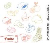hand drawn vector illustration  ... | Shutterstock .eps vector #362222012