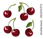 cherry  leaves  branch set in ... | Shutterstock .eps vector #362241572