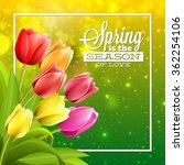 Spring Text With Tulip Flower....