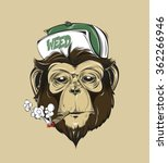 Swag Monkey In A Cap Or...