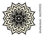 one flower isolated on white...   Shutterstock . vector #362290352