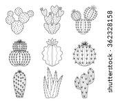 Vector Set Of Contour Cactus...