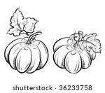 Two Pumpkins.  Raster Version...