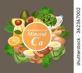 groups of healthy fruit ... | Shutterstock .eps vector #362367002