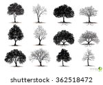 silhouettes of trees | Shutterstock .eps vector #362518472