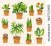 a collection of indoor plants... | Shutterstock . vector #362712302