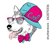 husky wearing a cap and a tie.... | Shutterstock .eps vector #362870336
