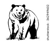 graphic image brown bear   Shutterstock .eps vector #362949602