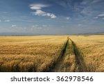 Small photo of Prairie, Alberta, Canada