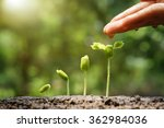 agriculture. growing plants.... | Shutterstock . vector #362984036