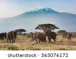 Mt. Kilimanjaro From Amboseli...