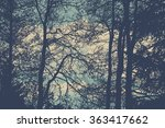 silhouettes of trees. detailed... | Shutterstock .eps vector #363417662