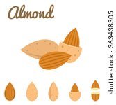 vector almond icon  flat design | Shutterstock .eps vector #363438305