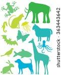 vector set of bright animals...   Shutterstock .eps vector #363443642