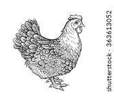 vector black and white chicken...   Shutterstock .eps vector #363613052
