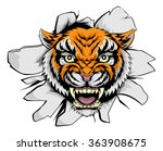 a mean tiger animal sports... | Shutterstock .eps vector #363908675