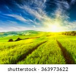 rolling summer landscape with... | Shutterstock . vector #363973622