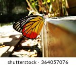 butterfly | Shutterstock . vector #364057076