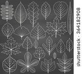set of tree leaves on... | Shutterstock .eps vector #364182908