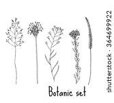sketch flower set | Shutterstock .eps vector #364699922