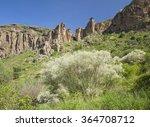 Small photo of Gran Canaria, Caldera de Bandama and Pico de Bandama in winter, white retama bushes flower