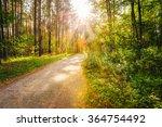 Path Road Way Pathway On Sunny...