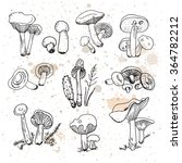 set of hand drawn mushrooms.... | Shutterstock .eps vector #364782212