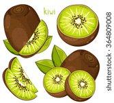 fresh kiwi. whole  half and...   Shutterstock .eps vector #364809008