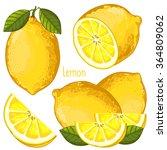 lemon isolated vector on white...   Shutterstock .eps vector #364809062