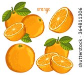 Orange Fruit Vector Isolated...