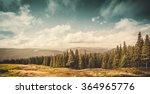 Summer Landscape Mountain Path Forest - Fine Art prints