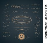 vintage set of calligraphic... | Shutterstock . vector #365041145