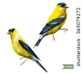 vaterkolor vector drawing of a... | Shutterstock .eps vector #365079272