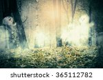 Dark Forest And Ghosts In The...