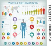 Water And Human Body...