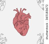 valentines day seamless pattern ... | Shutterstock .eps vector #365183672