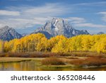 autumn in grand teton national... | Shutterstock . vector #365208446